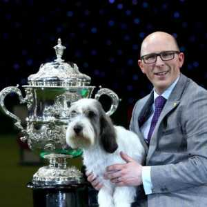 Crufts Dog Show commence demain